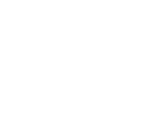 SnowRush Company